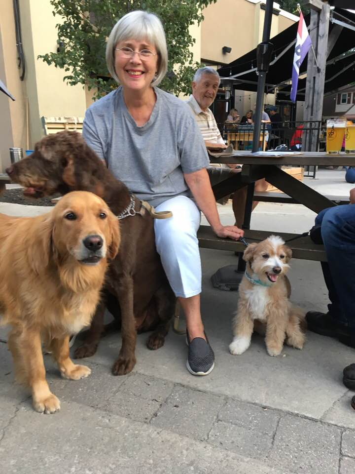 About Dog Nutrition Naturally