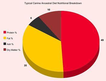 Dog Food Nutrition Breakdown