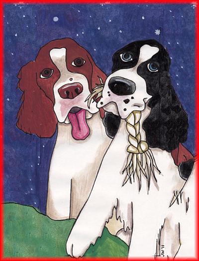 Dog Nutrition Naturally Newsletter